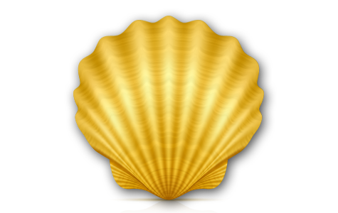 Shell Oracle
