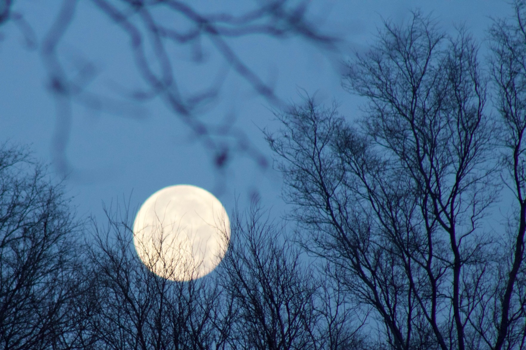 The November Full Moon Is All About Getting Answers—Here's a Spell to Help