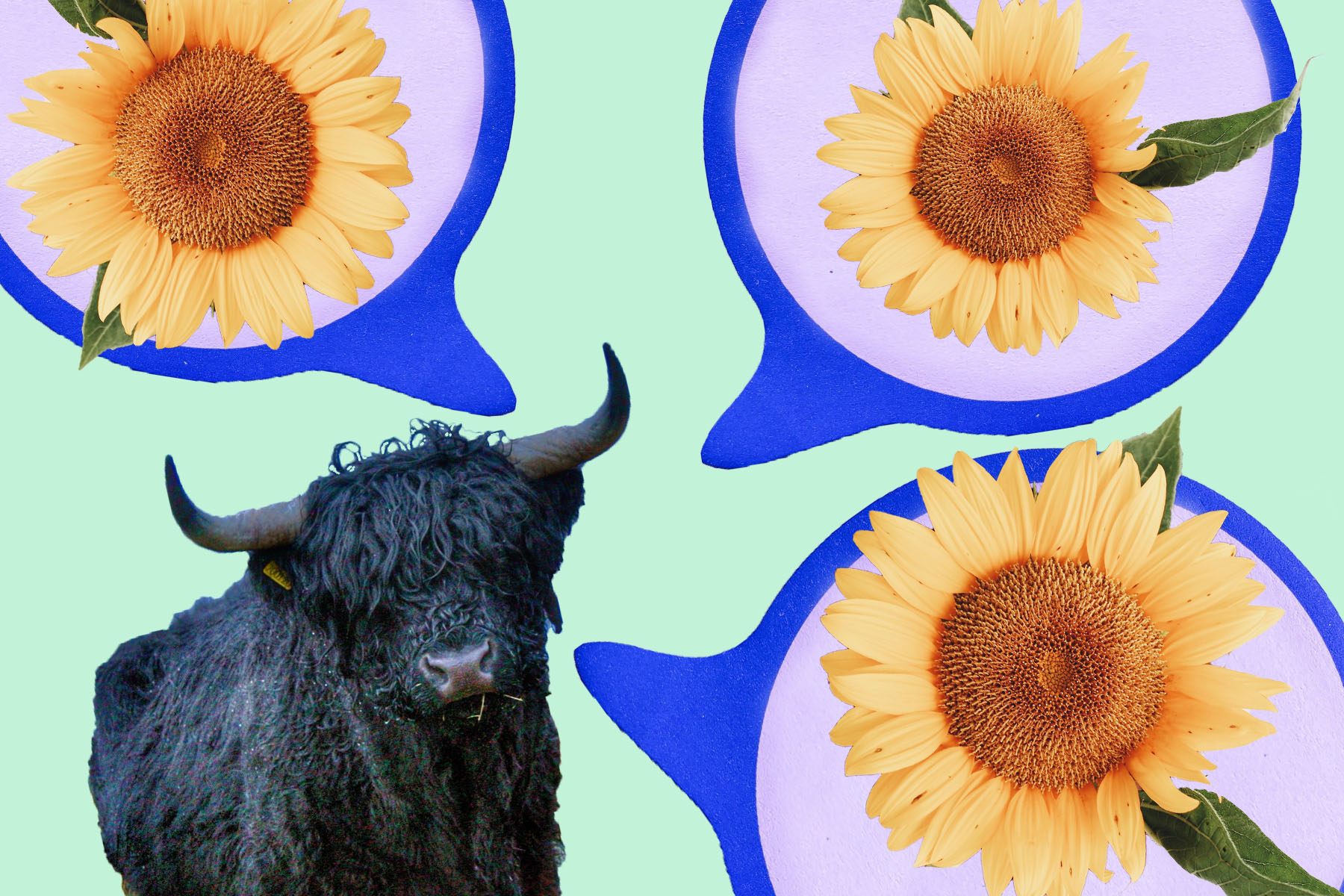 Your Taurus Season Horoscope Is Telling You to Chill Out
