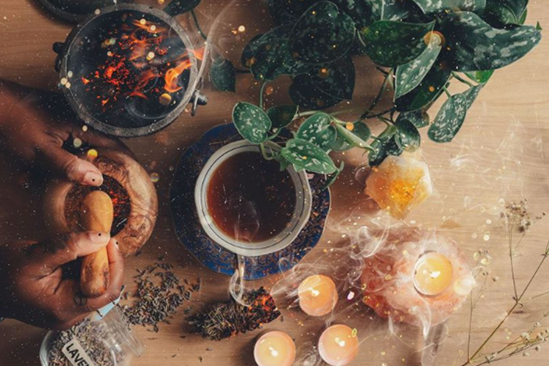 9 Plant-Loving Herbalists to Follow on Instagram