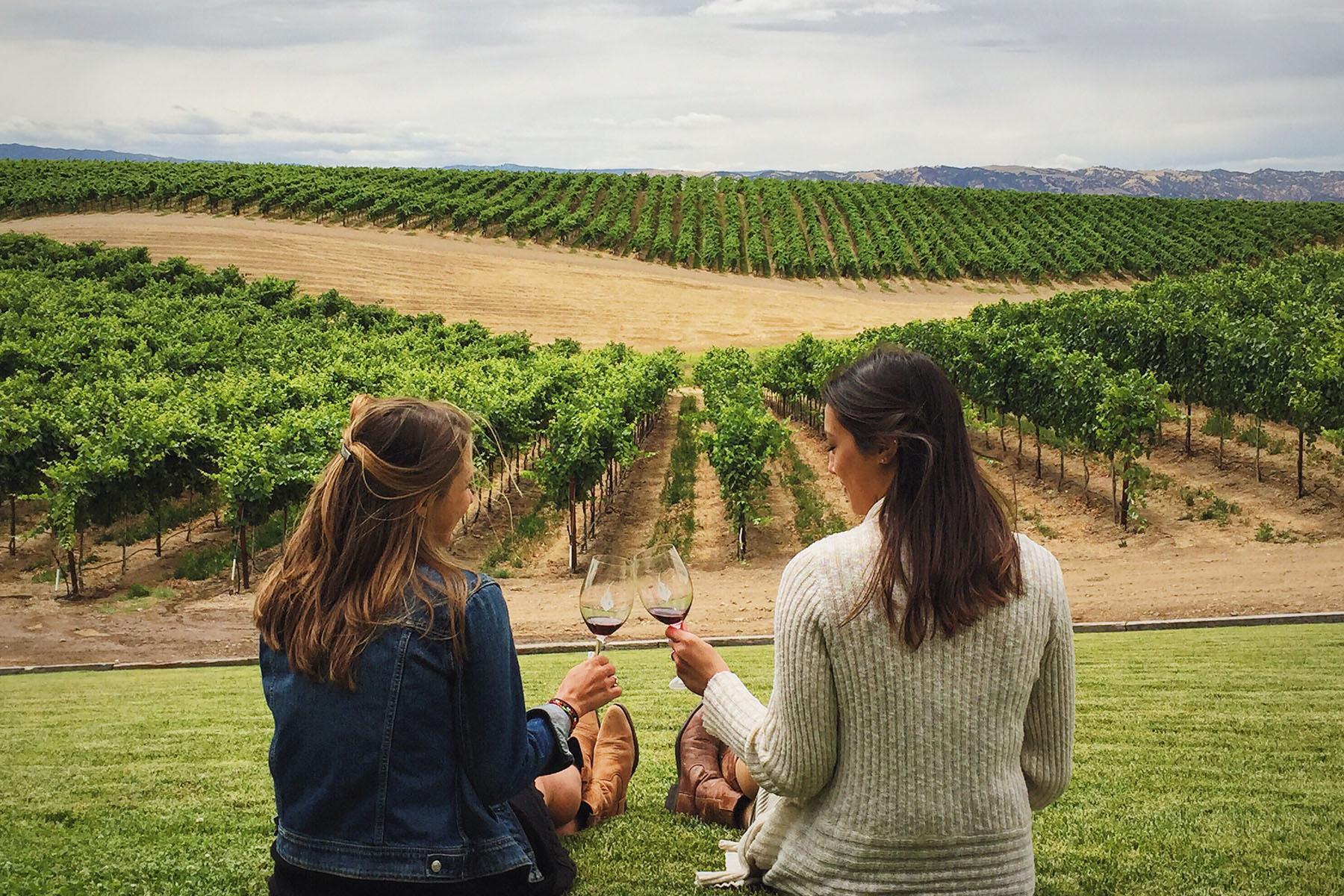 wine tasting Napa
