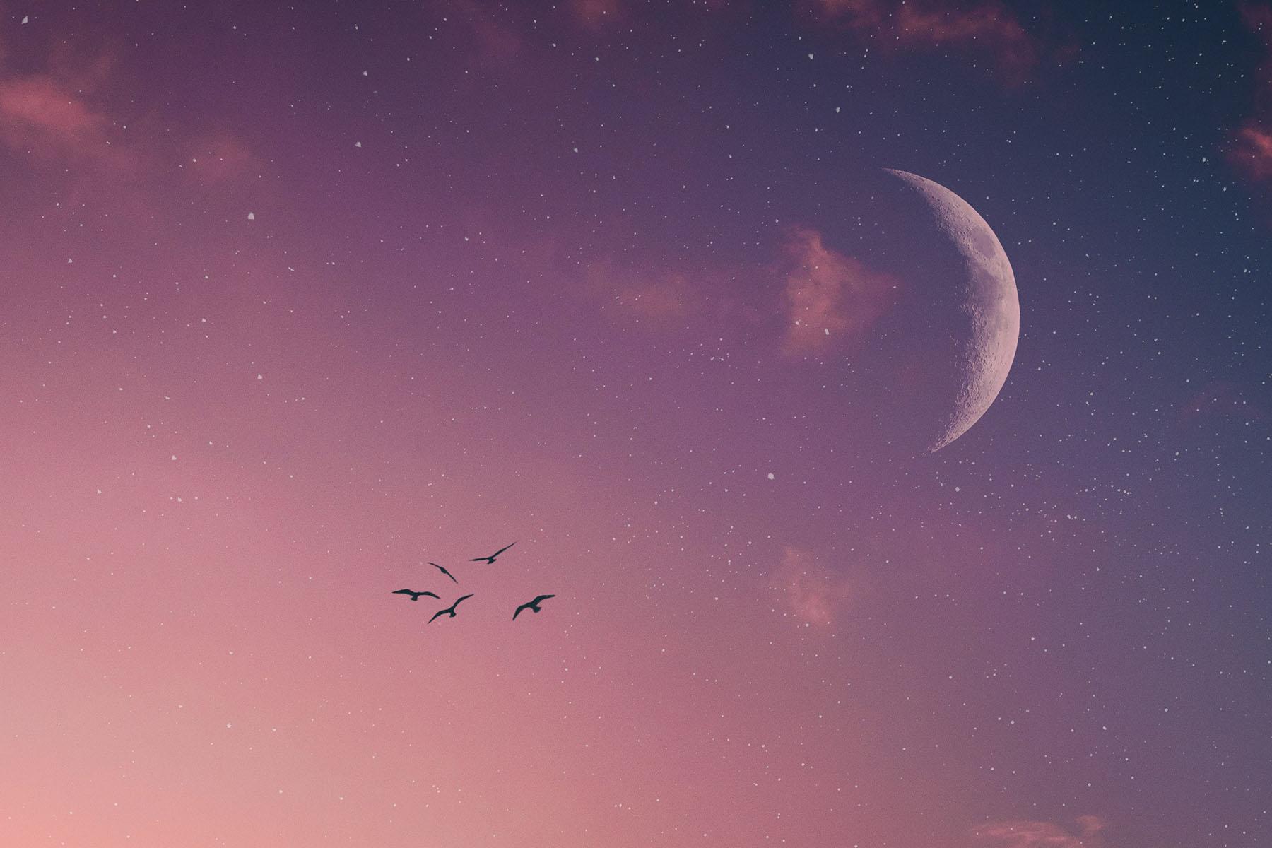 February 2020 New Moon in Pisces Horoscopes