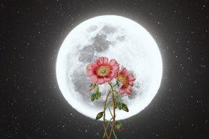 October 2021 Full Moon in Aries Horoscopes