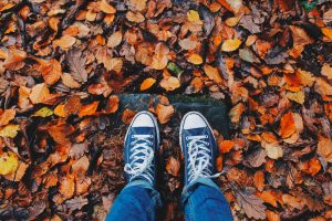 Dive Into the Fall Equinox