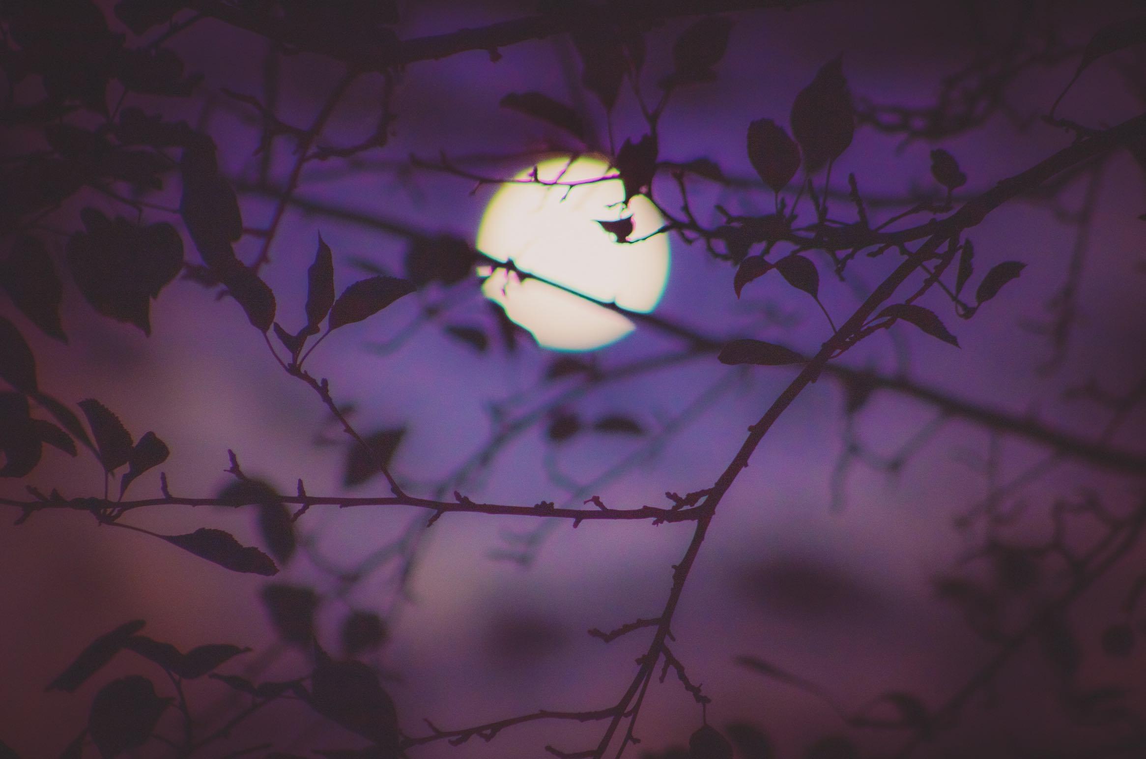September 2021 Full Moon in Pisces Horoscopes